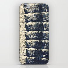 The Alligator Crawl iPhone & iPod Skin