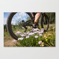 Flower Cycle Canvas Print