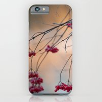 iPhone & iPod Case featuring Winter Berries by Mary Kilbreath