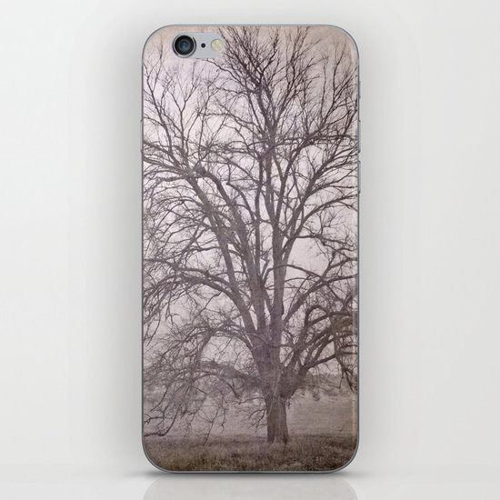 The big tree under the storm iPhone & iPod Skin