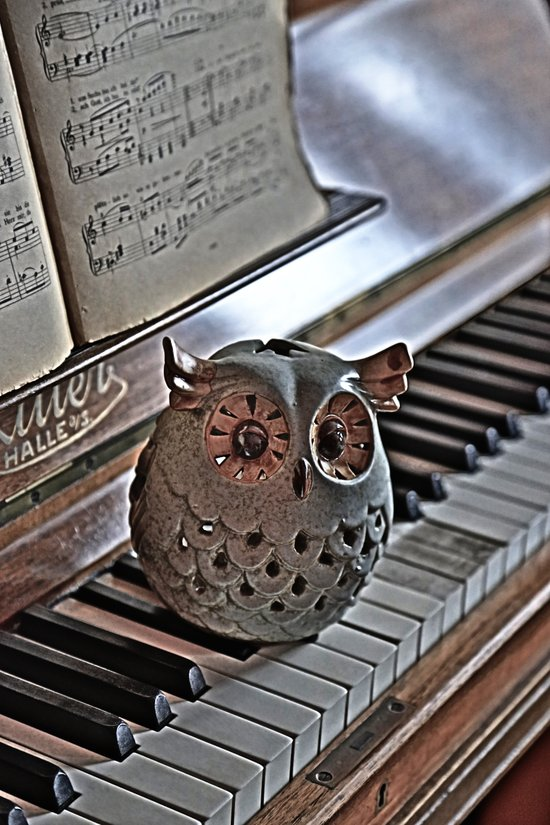 the pianos Owl HDR Art Print