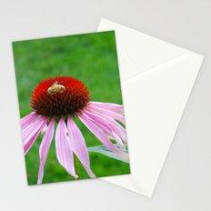 Buzz Stationery Cards