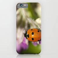 iPhone & iPod Case featuring Ladybird in Spring by Marisa Jane