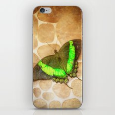 Butterfly#4 iPhone & iPod Skin