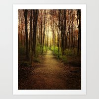 Woodland Wander Art Print