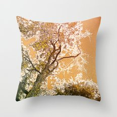 Golden Sky Throw Pillow