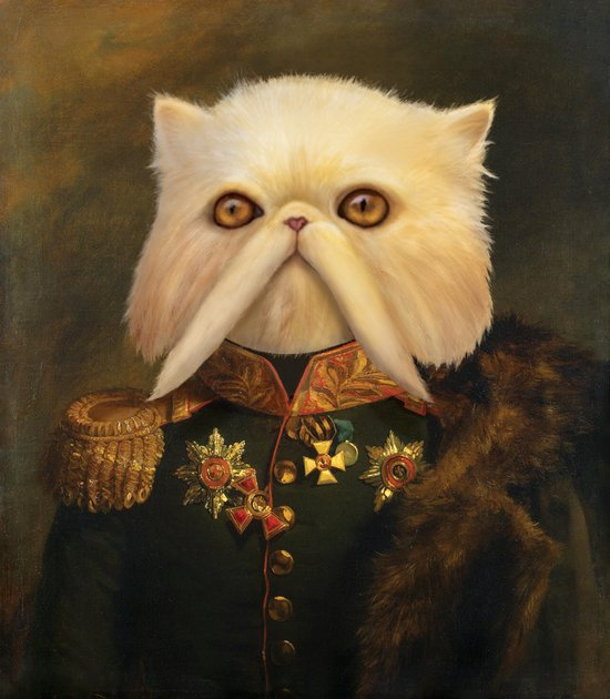 Persian Cat Emperor Art Print