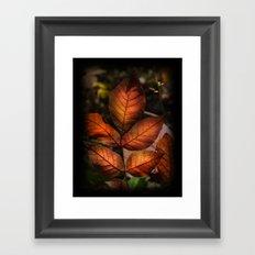 Golden Fall Sunset Leaves Framed Art Print