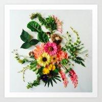 Botanical Mandala Art Print