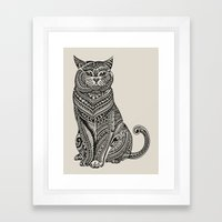 Polynesian British Shorthair cat Framed Art Print