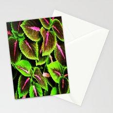 Coleus Stationery Cards