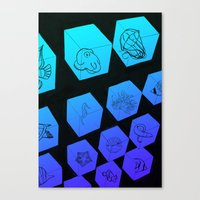 Sea Creature Cubes Canvas Print