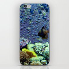 Beautifully Ugly Brown Fish iPhone & iPod Skin