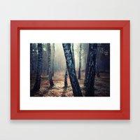 Betula Framed Art Print