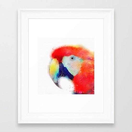 The Articulate - Parrot Framed Art Print