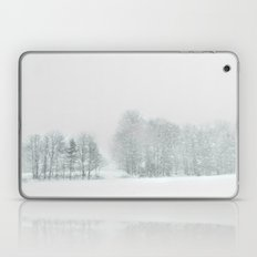 Caught in the Storm Laptop & iPad Skin