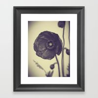 Nature In Black And Whit… Framed Art Print