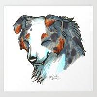 Brush Breeds-Australian … Art Print