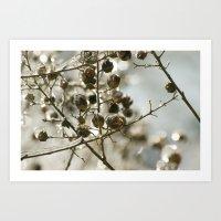 Winter's Silver Jewel Art Print