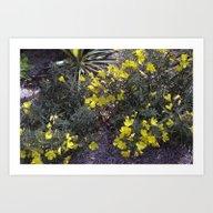 Longwood Gardens - Sprin… Art Print