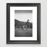 Kaleidoscope of Giraffes Framed Art Print