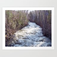 Swollen Creek Runs Wild Art Print