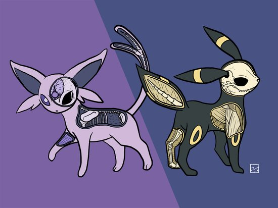 Espeon & Umbreon Anatomy Art Print