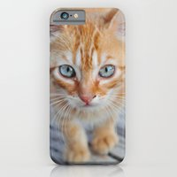 Kitty Cat iPhone 6 Slim Case