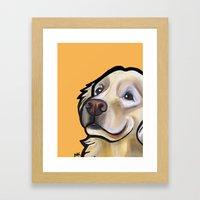 George The Golden Retrie… Framed Art Print