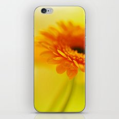 Orange Crush iPhone & iPod Skin