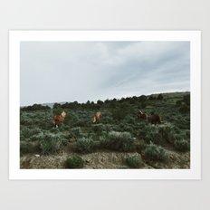 Nevada Horses Art Print
