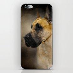 Dashing Great Dane iPhone & iPod Skin