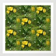 Spring Flowers... Art Print