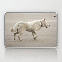 Whitey Laptop & iPad Skin