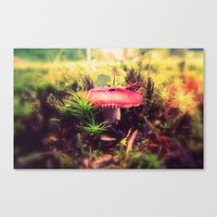 To Be Small, You Must Be… Canvas Print