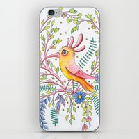 serious bird iPhone & iPod Skin