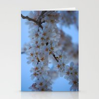 Cherry Blossoms 3 Stationery Cards