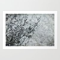 Silver Flower Winter Art Print
