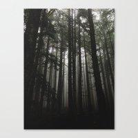 Foggy Trees, Larch Mount… Canvas Print