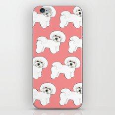 Bichon on coral iPhone & iPod Skin