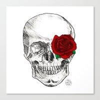 Rose Skull  Canvas Print