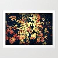 Autumnally  Art Print