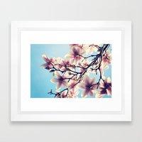 May Magnolias  Framed Art Print