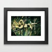 Magical Spring Framed Art Print