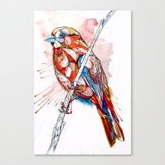 Color Spiel Canvas Print