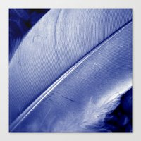 blue feather II Canvas Print