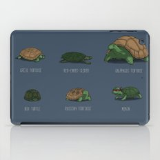 Know Your Turtles iPad Case