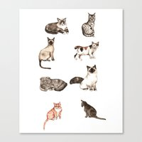 For Cat Lovers - Waterco… Canvas Print