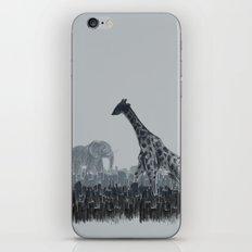 The Tall Grass iPhone & iPod Skin