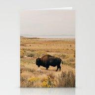 Bison Bull On Antelope I… Stationery Cards